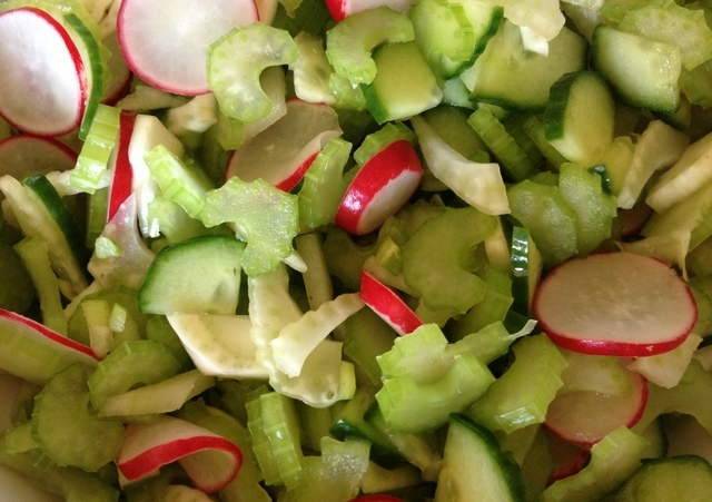 close up celery fennel cucumber radish salad www.cookingforhealth.biz
